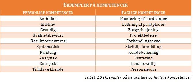 kompetencer_eksempler